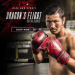 VENUM ボクシンググローブ Dragon's Flight/ドラゴンズ フライト