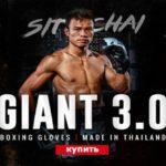 VENUM/ヴェナム BOXING GLOVE/ボクシンググローブ GIANT 3.0/ジャイアント3.0 e